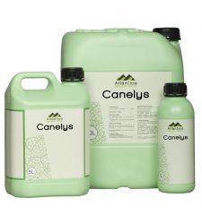 Acaricid bio CANELYS (1 l), Atlantica Agricola