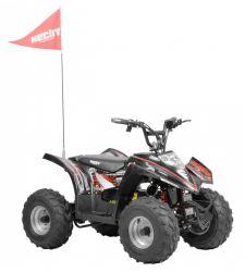 ATV electric pentru copii, 36V / 20 Ah / 750W, 3+1 viteze, Hecht 54750