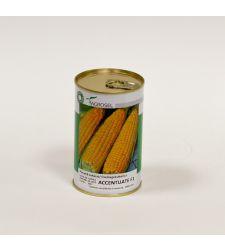Seminte porumb zaharat (dulce) Accentuate F1 (2.500 seminte), Agrosel