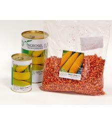 Seminte porumb zaharat (dulce) soi autohton Sweet Spirit F1 (2.500 seminte), Agrosel